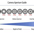 Understanding Aperture in 5 Easy Steps