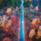 This Drone Video of Fall Colors Proves That There's No ...