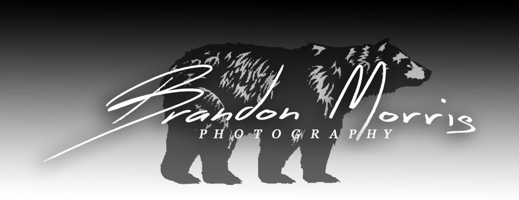 BrandonMorrisPhotogrpahy