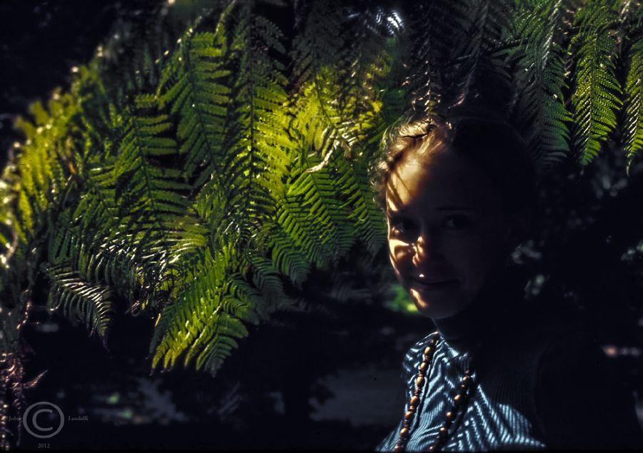 Revealing-Light