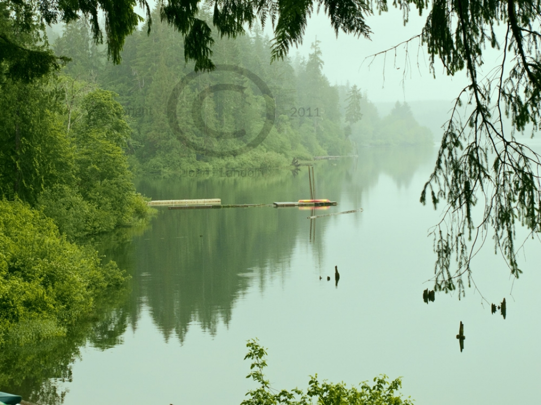 Quinault-Morning-