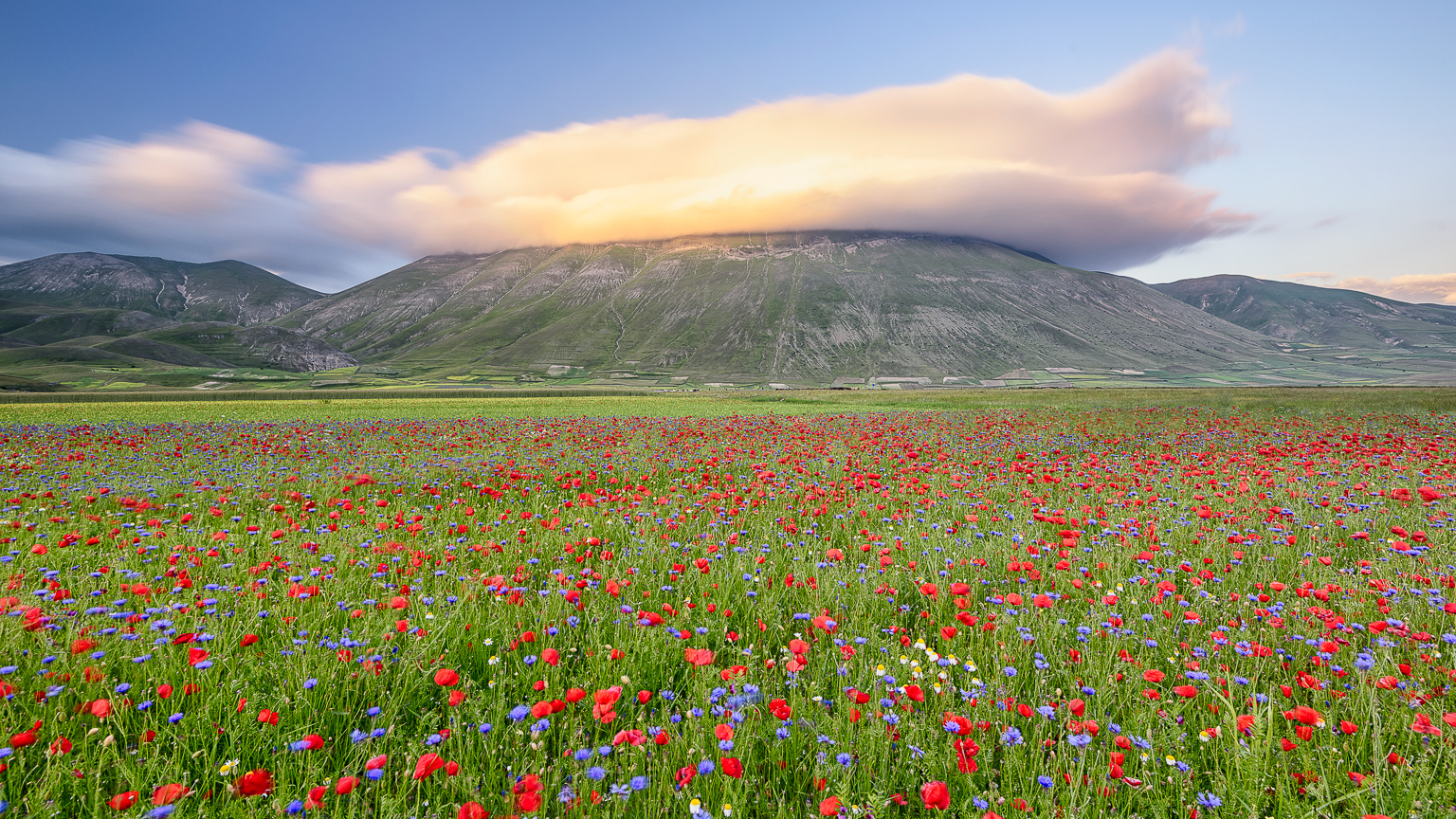 The mountain's hat - Castelluccio di Norcia, Italy