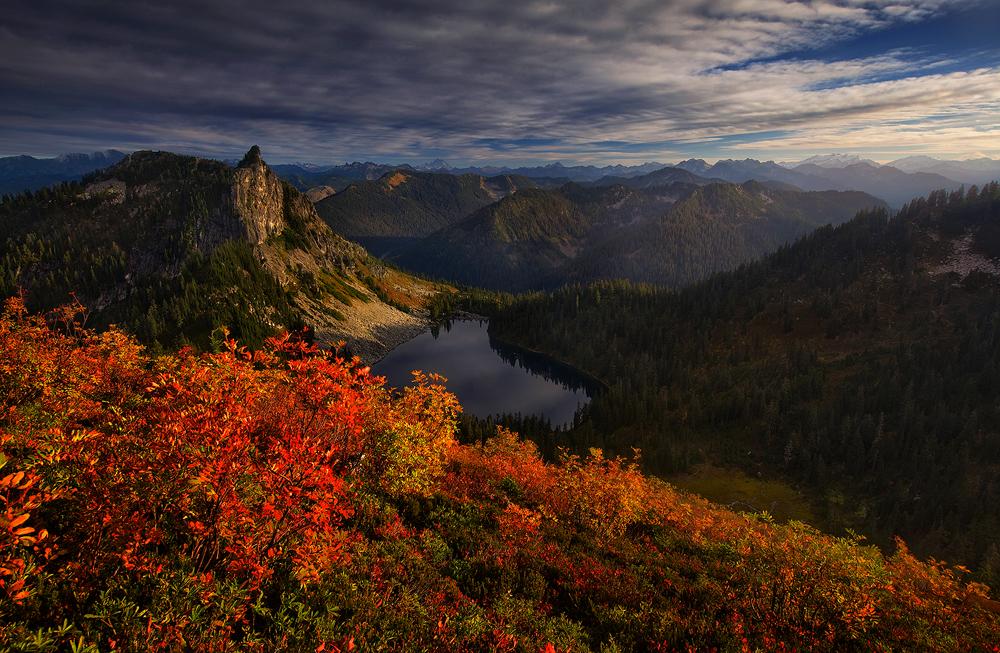 Autumn Arising