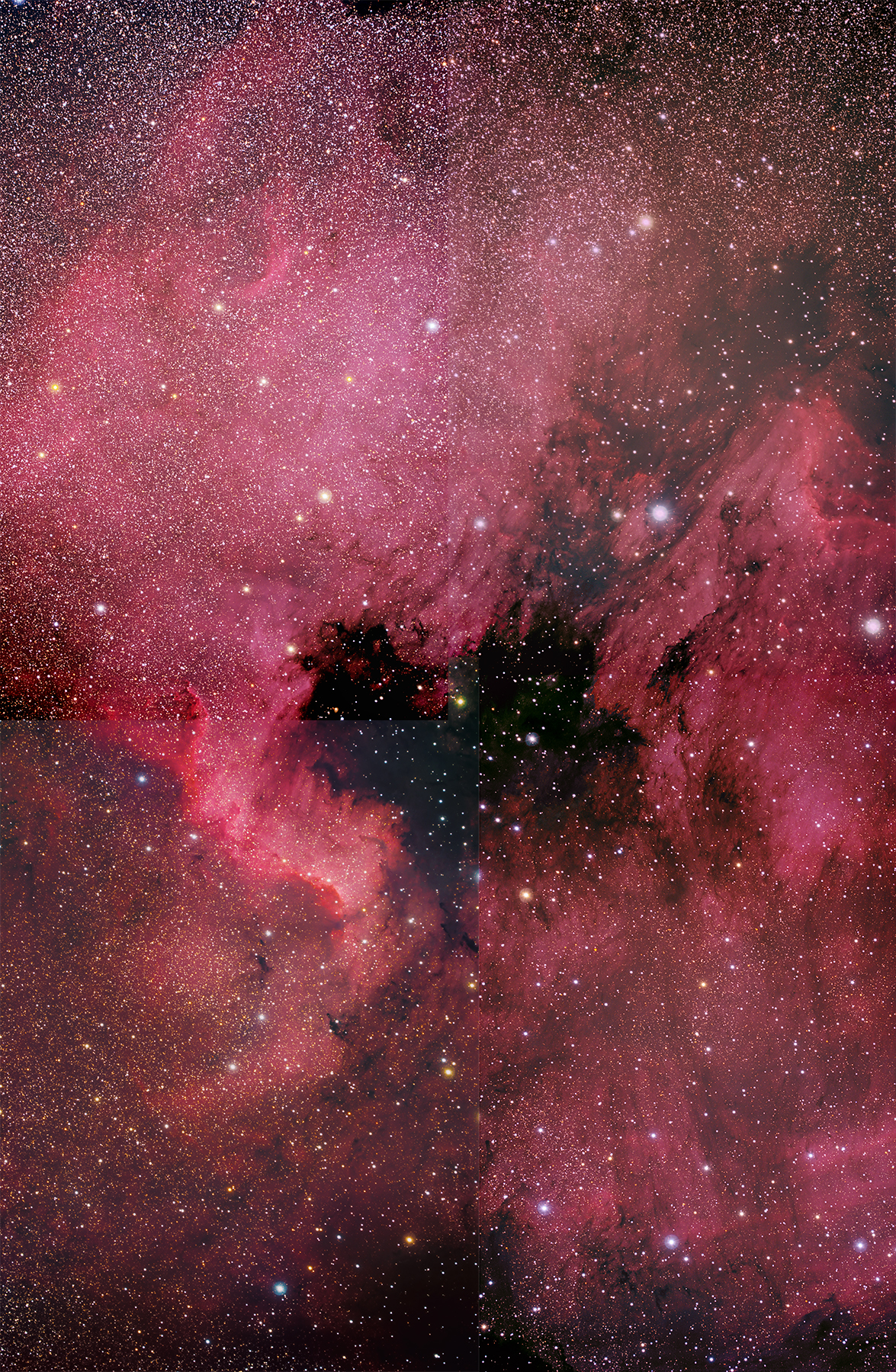 North American and the Pelican Nebula