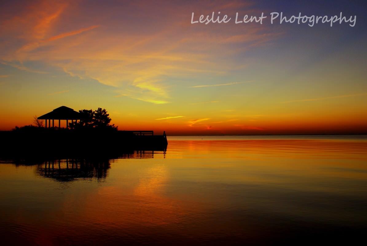 Leslie Lent