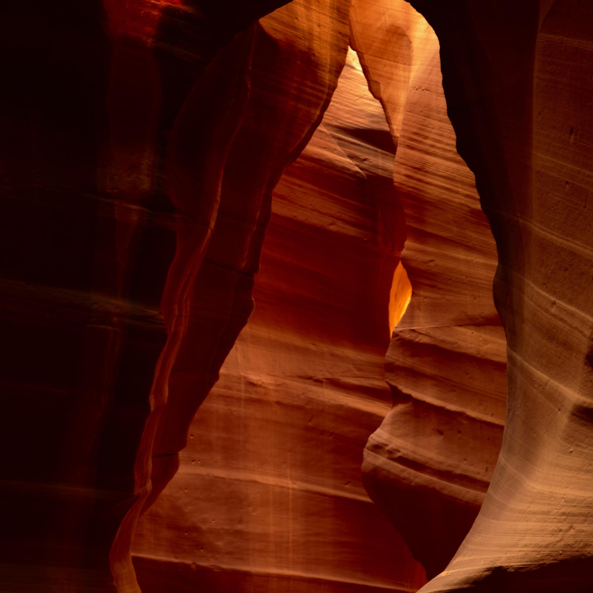 The Bear in the Slot Canyons