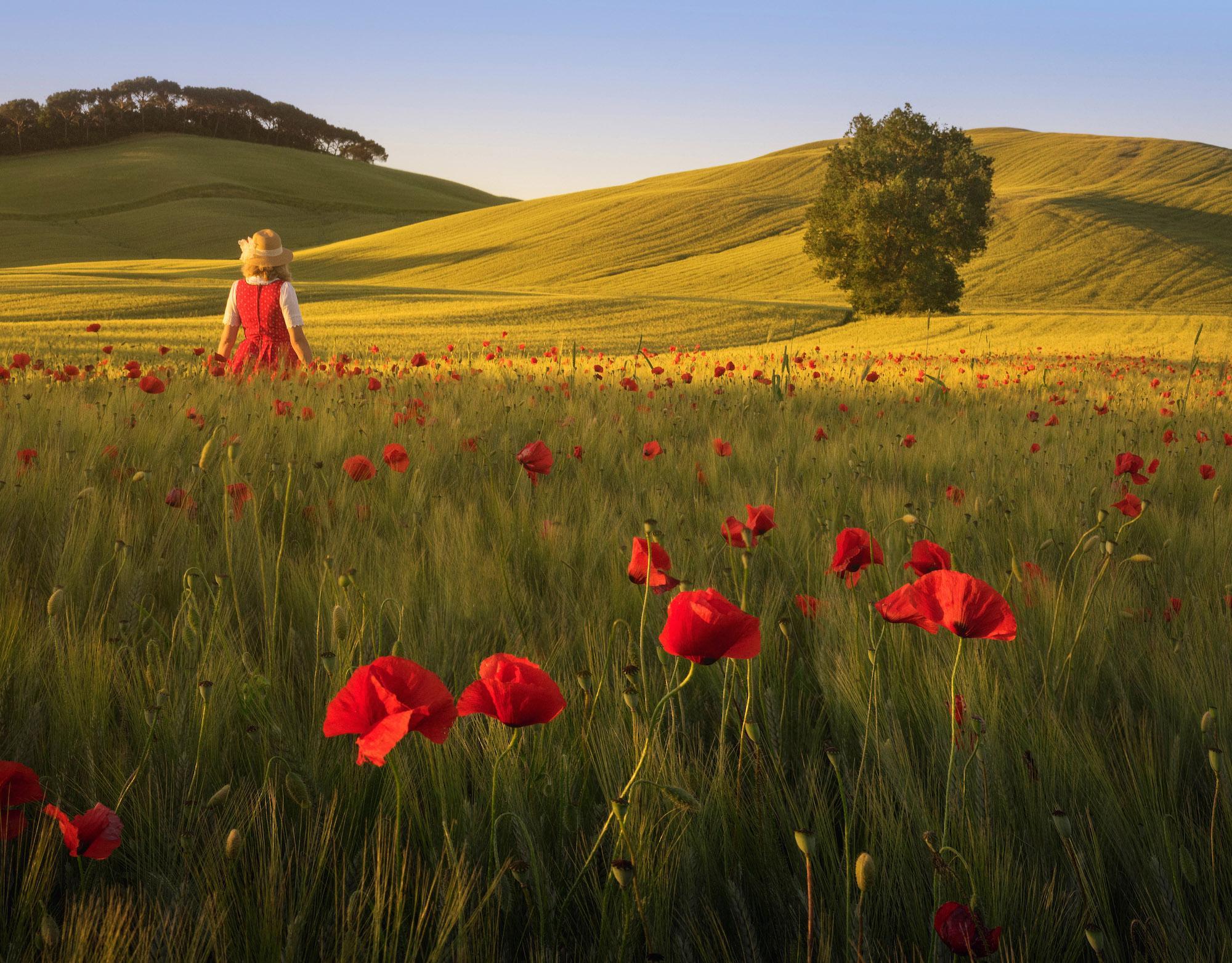 Spring Tuscany by Daniel Kordan 2