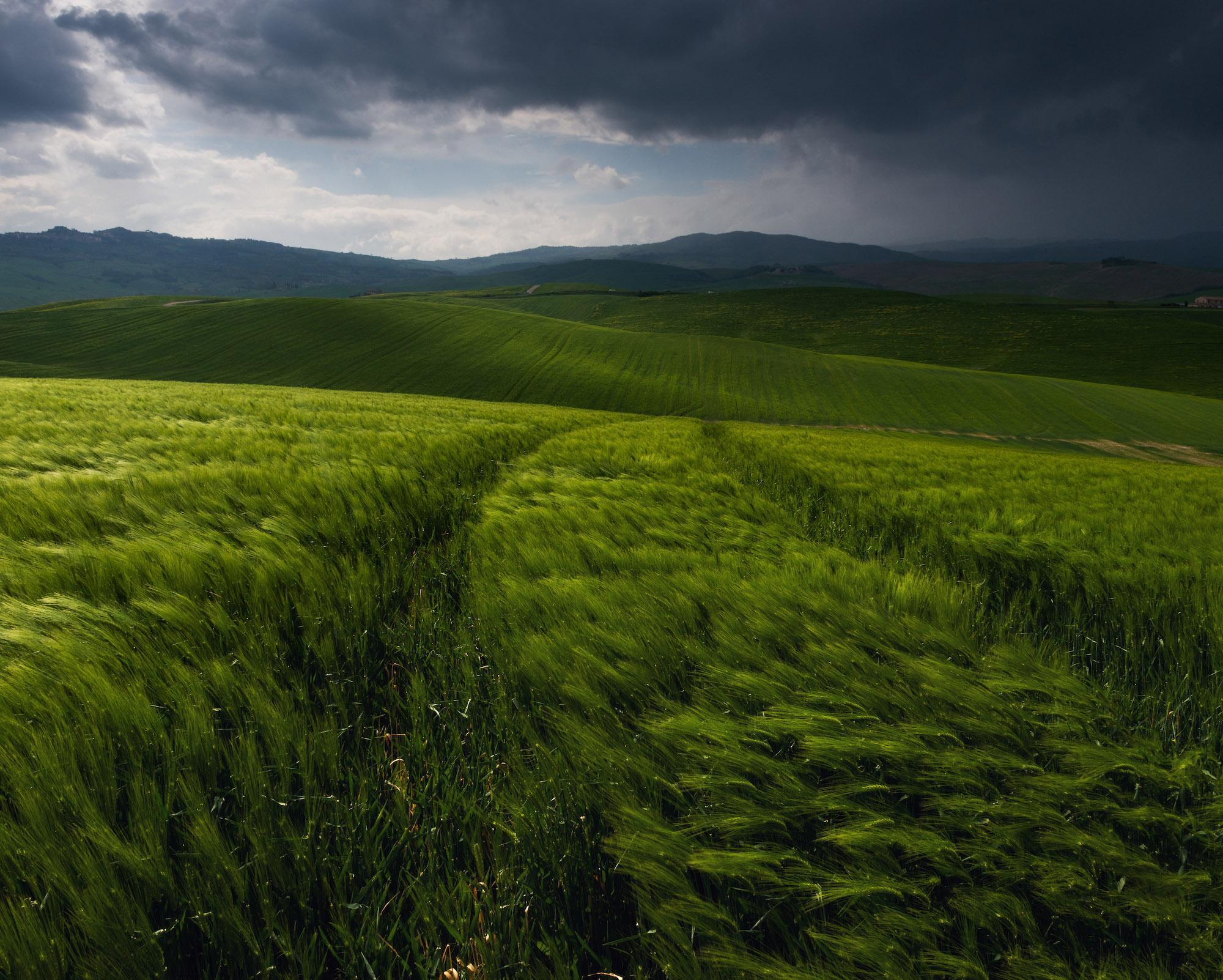 by Daniel Kordan  - Before the Tuscany storm
