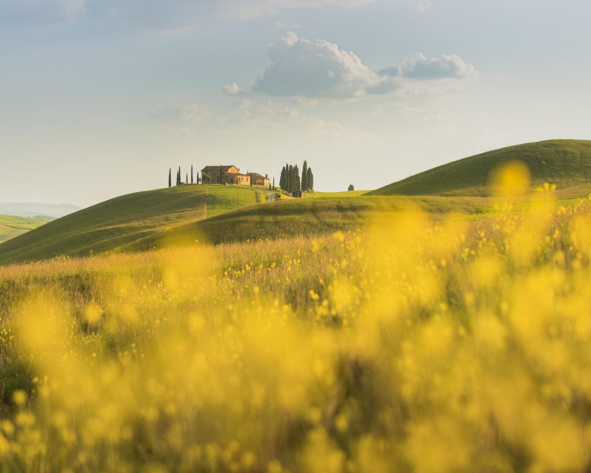 by Daniel Kordan  - Spring in Tuscany (2)