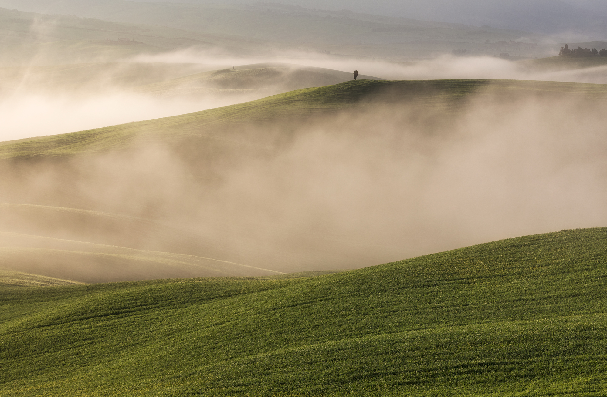 Fog in Val d'Orcia, Tuscany