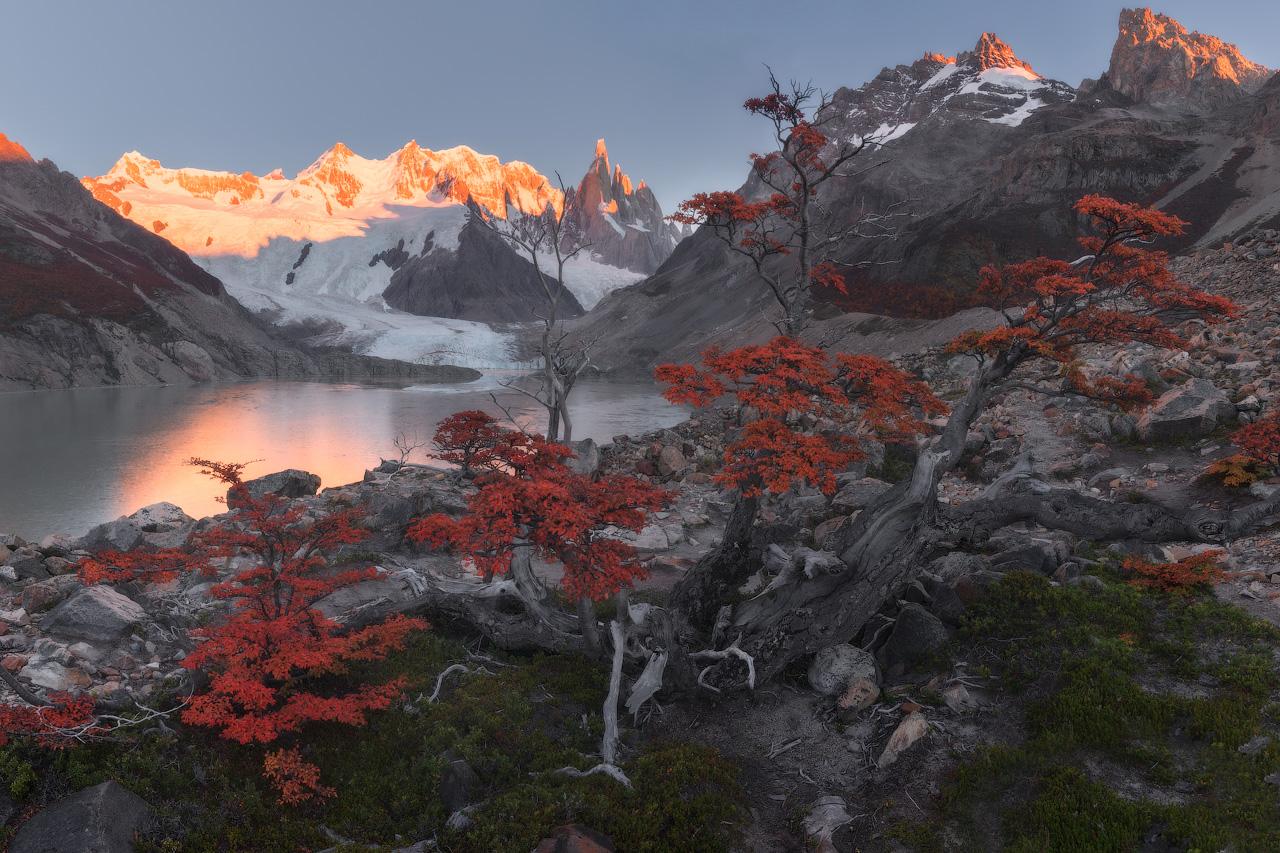 Fall in the Wild