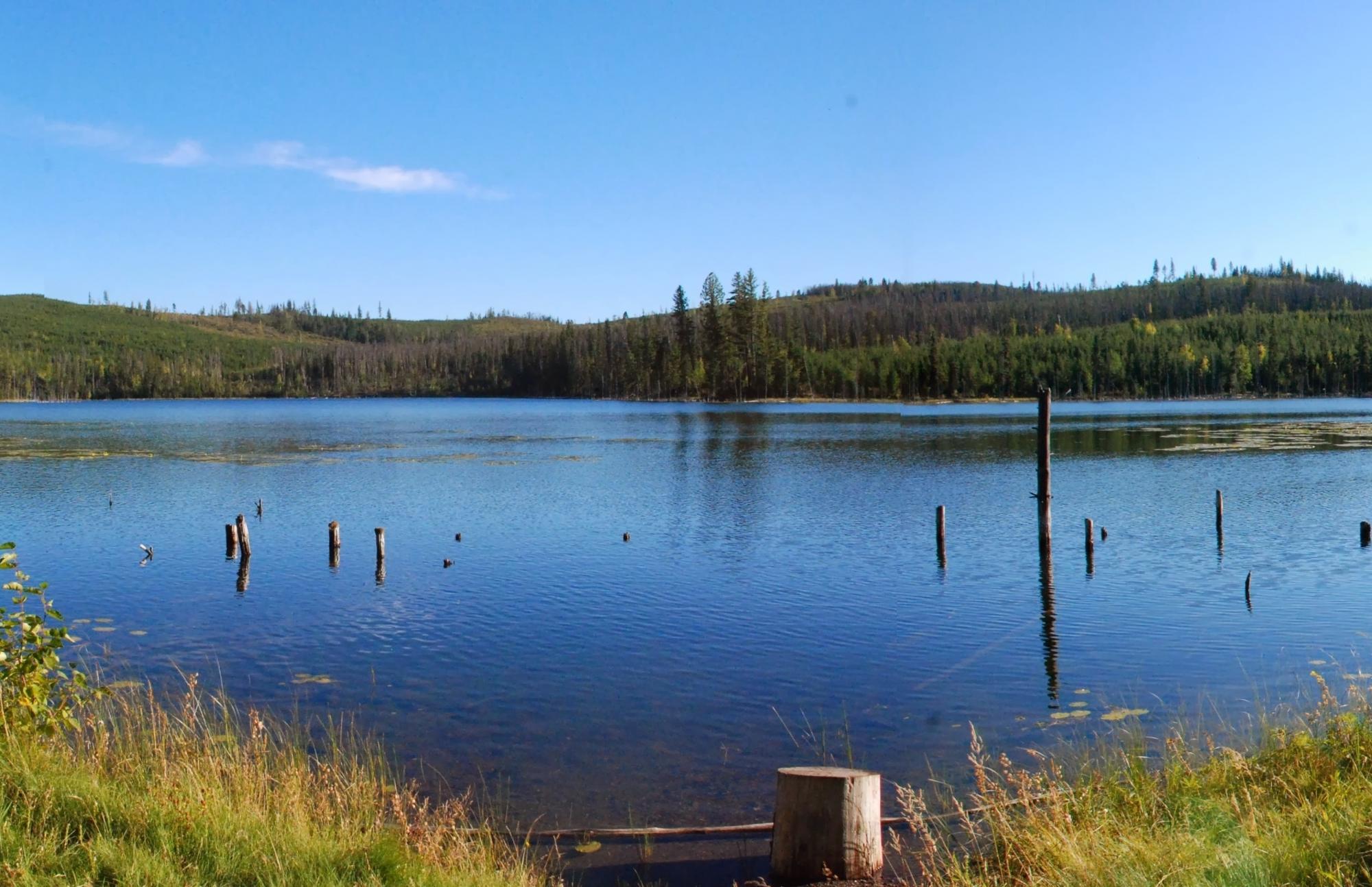 Boot Lake Stitch