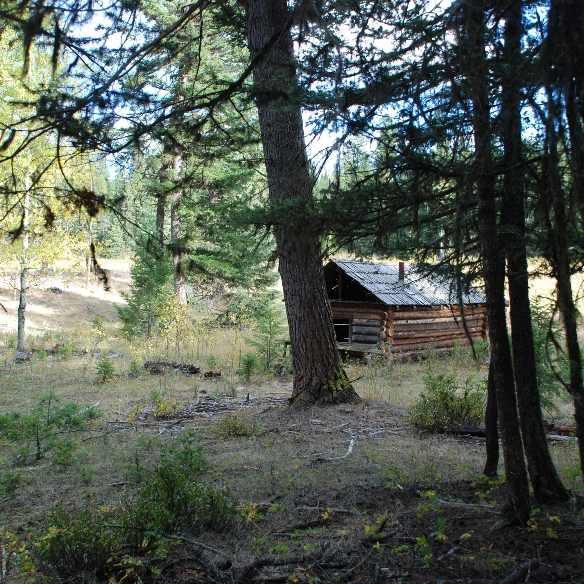 Cariboo Cabin distant