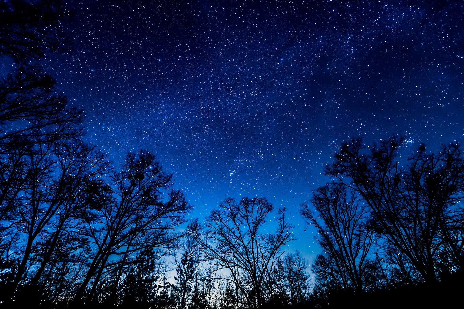 Georgia Night Sky