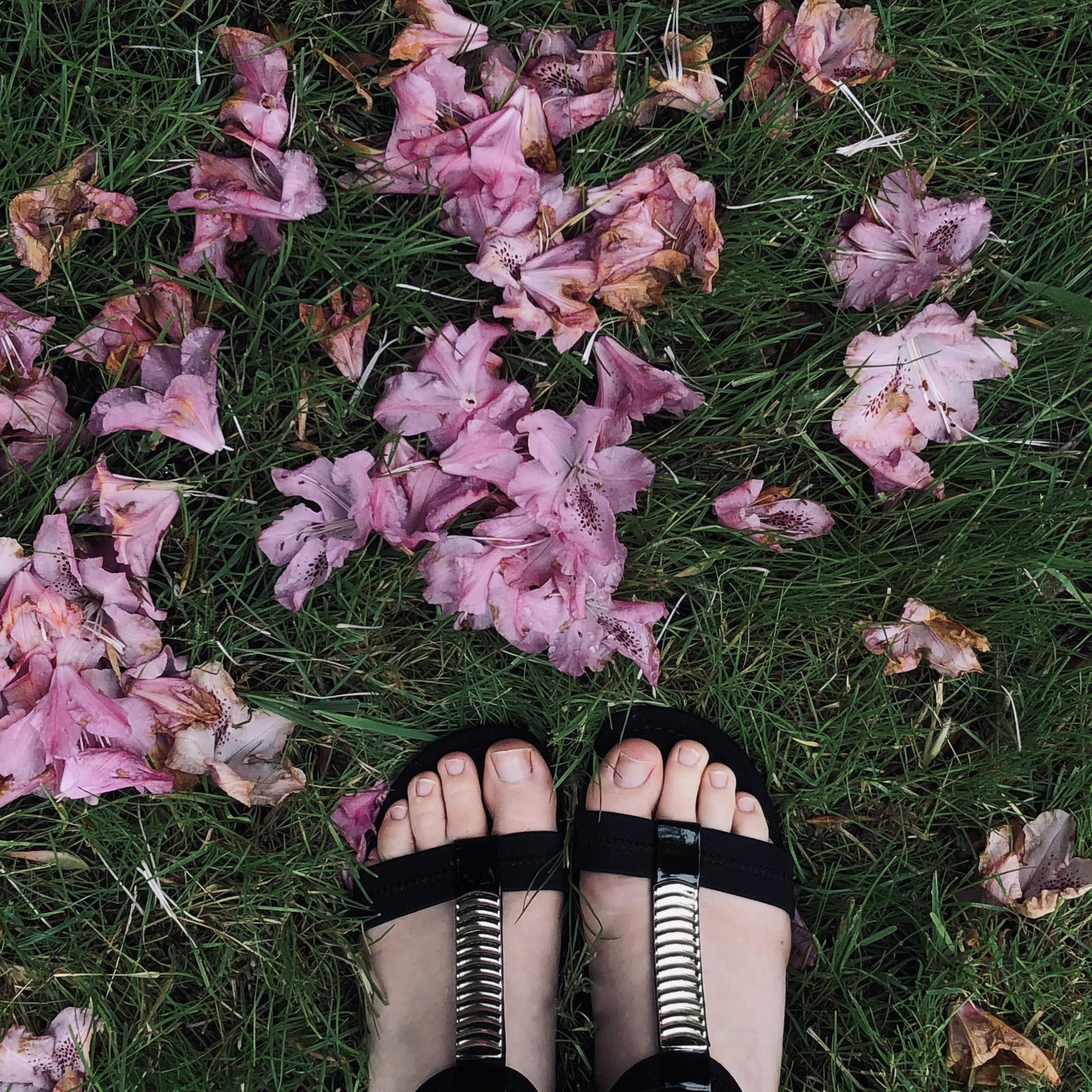 Toes in the spring with fallen petals