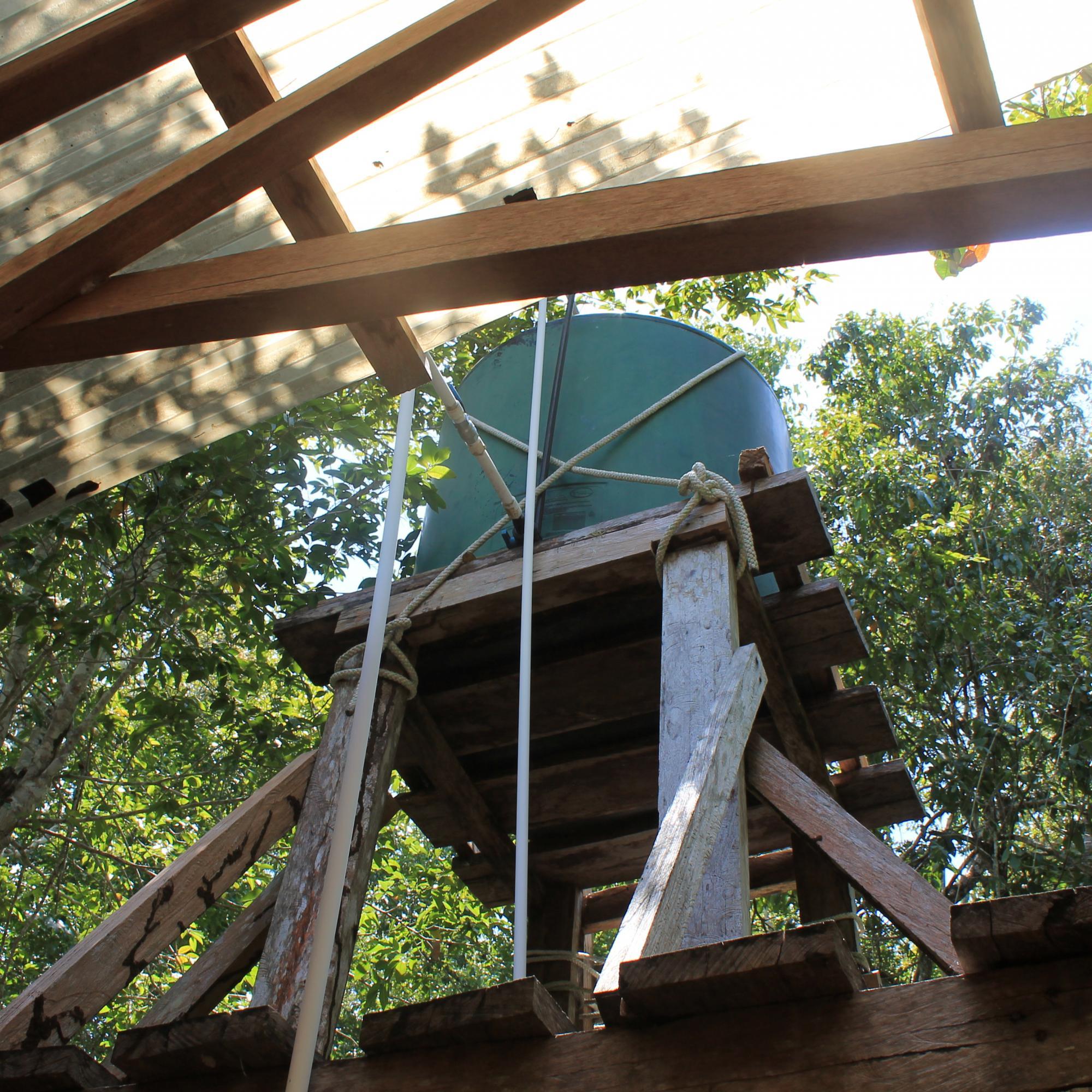 Dr. Hansen's Tree House IMG_6788