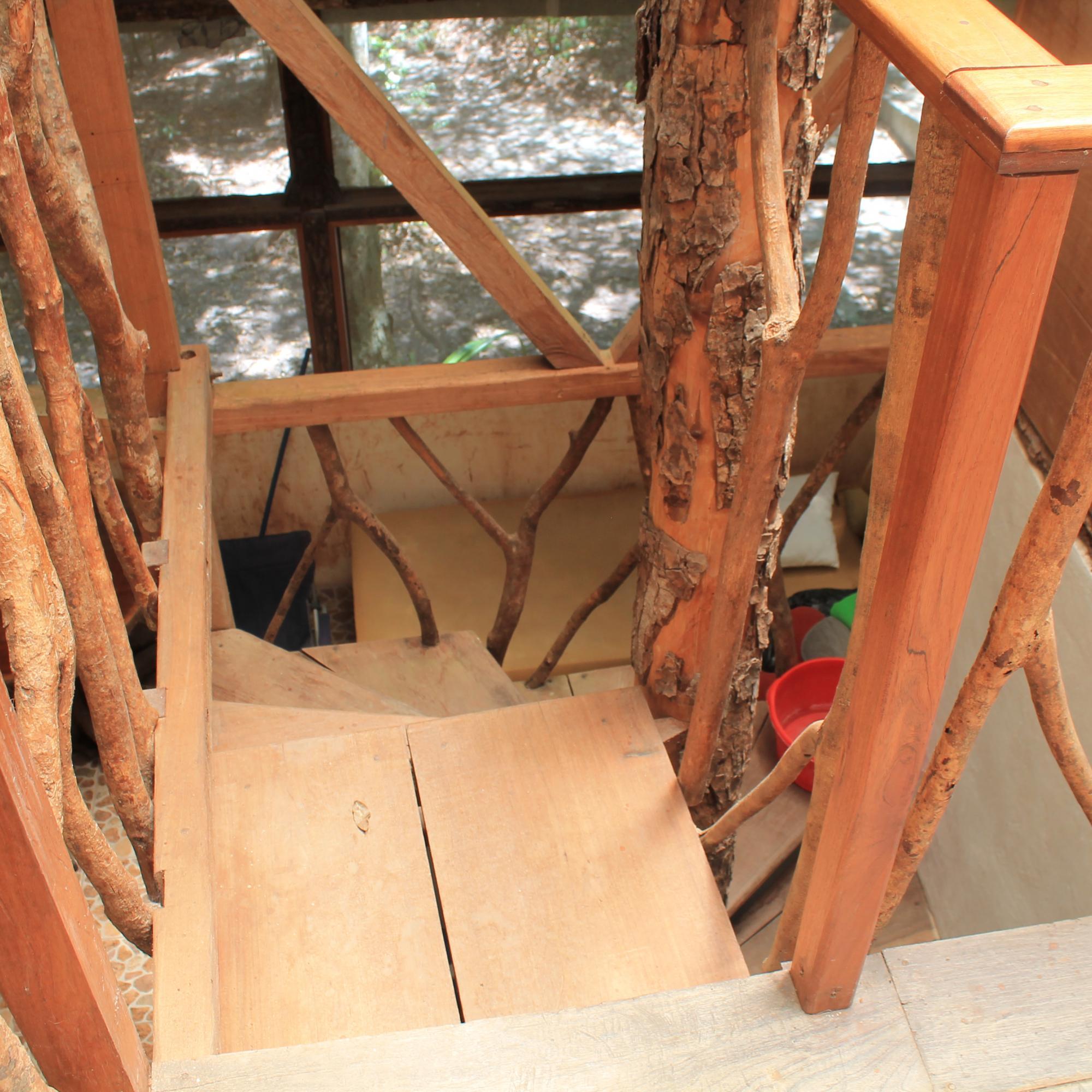Dr. Hansen's Tree House IMG_6785