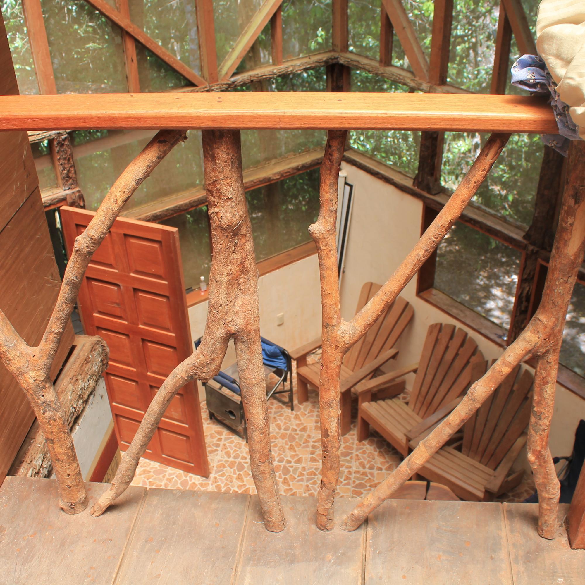 Dr. Hansen's Tree House IMG_6783