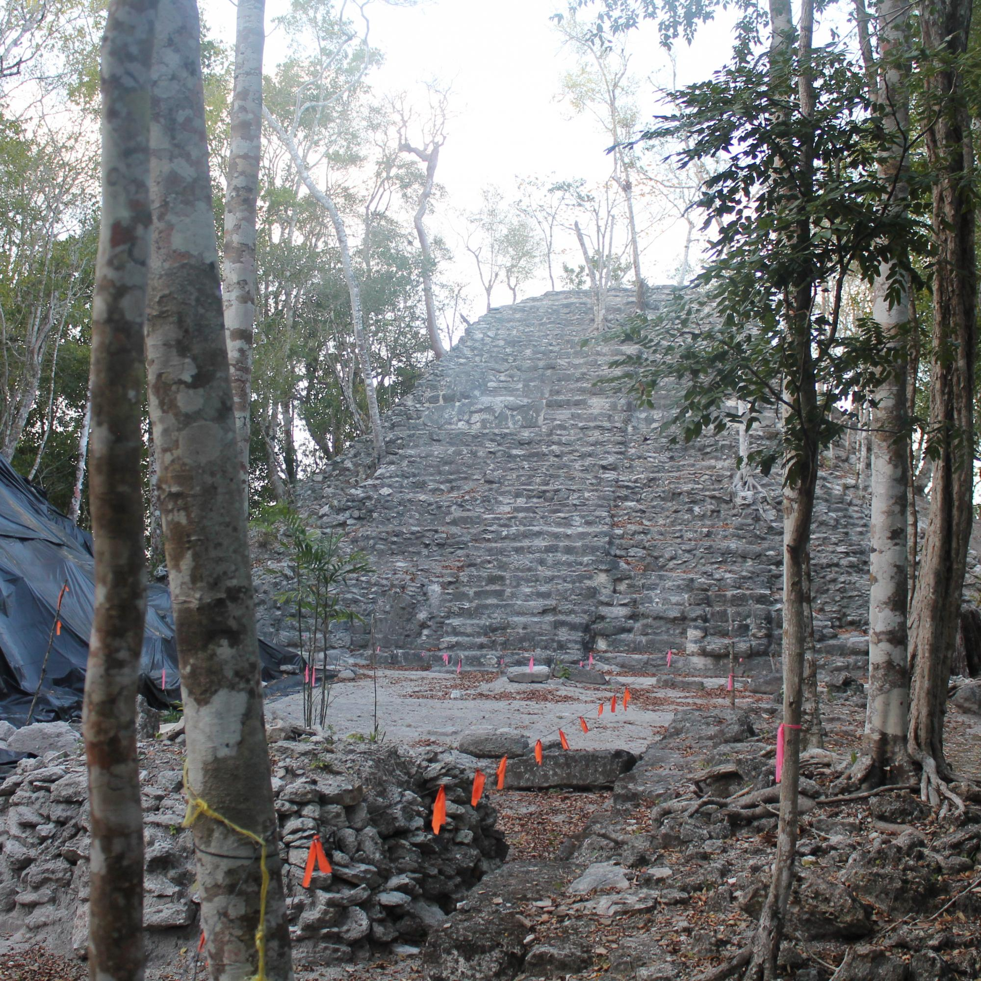 Top base of Tigre Pyramid MG_6557
