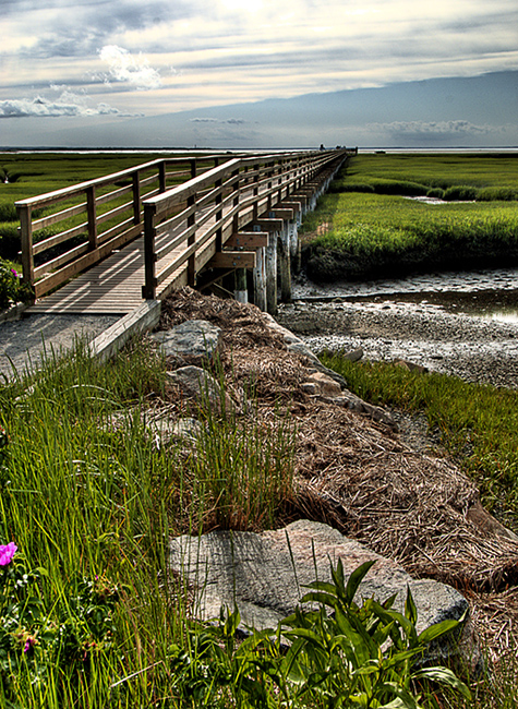 Bass Hole Boardwalk, Cape Cod, MA