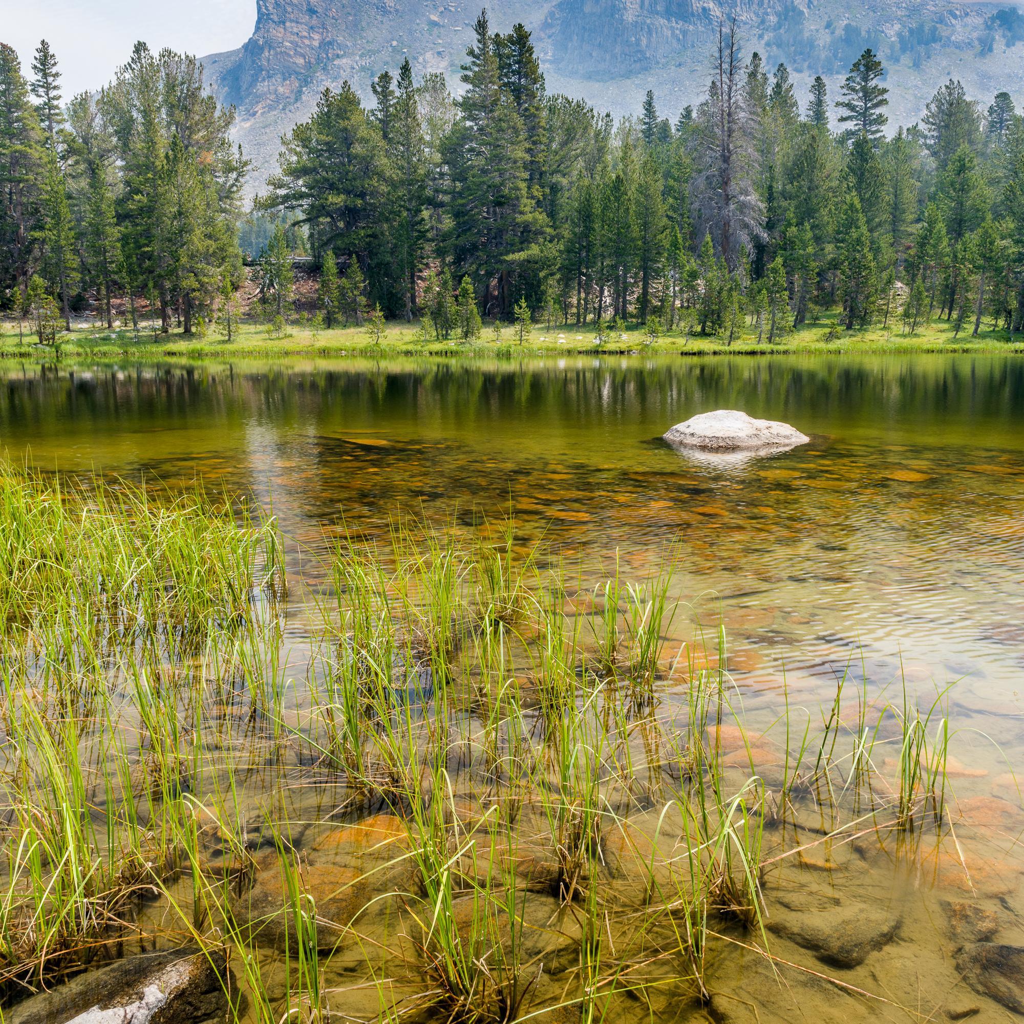 Mount Dana Trail, Yosemite