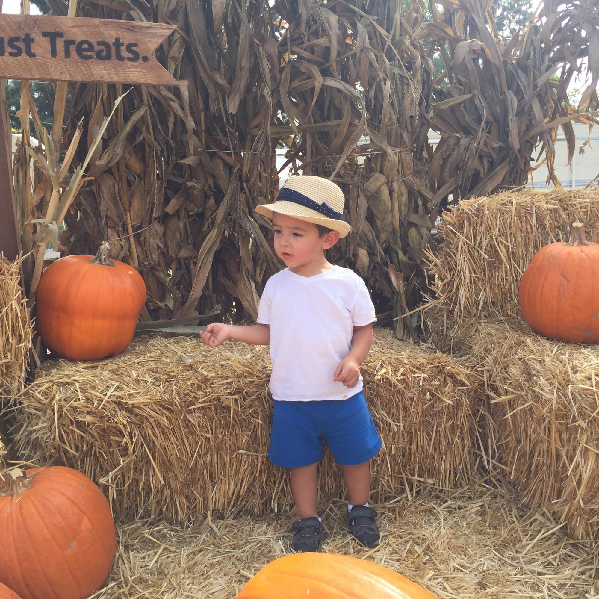 Caleb in Pumpkin Patch