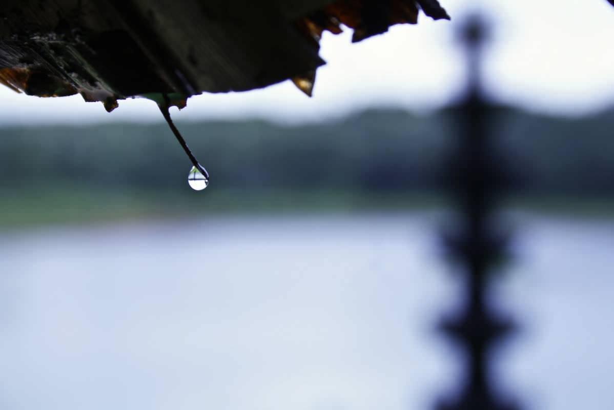 The drop...