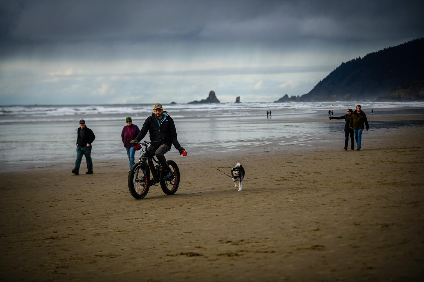 People on the Beach, with Dogs III