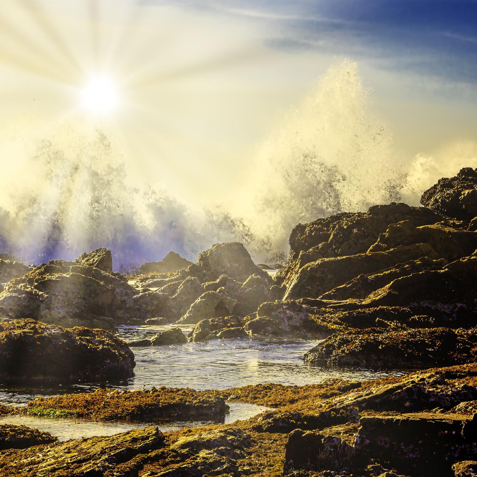 Dan Blackburn Roaring Waves Point Lobos Park Big Sur California_MGL1894