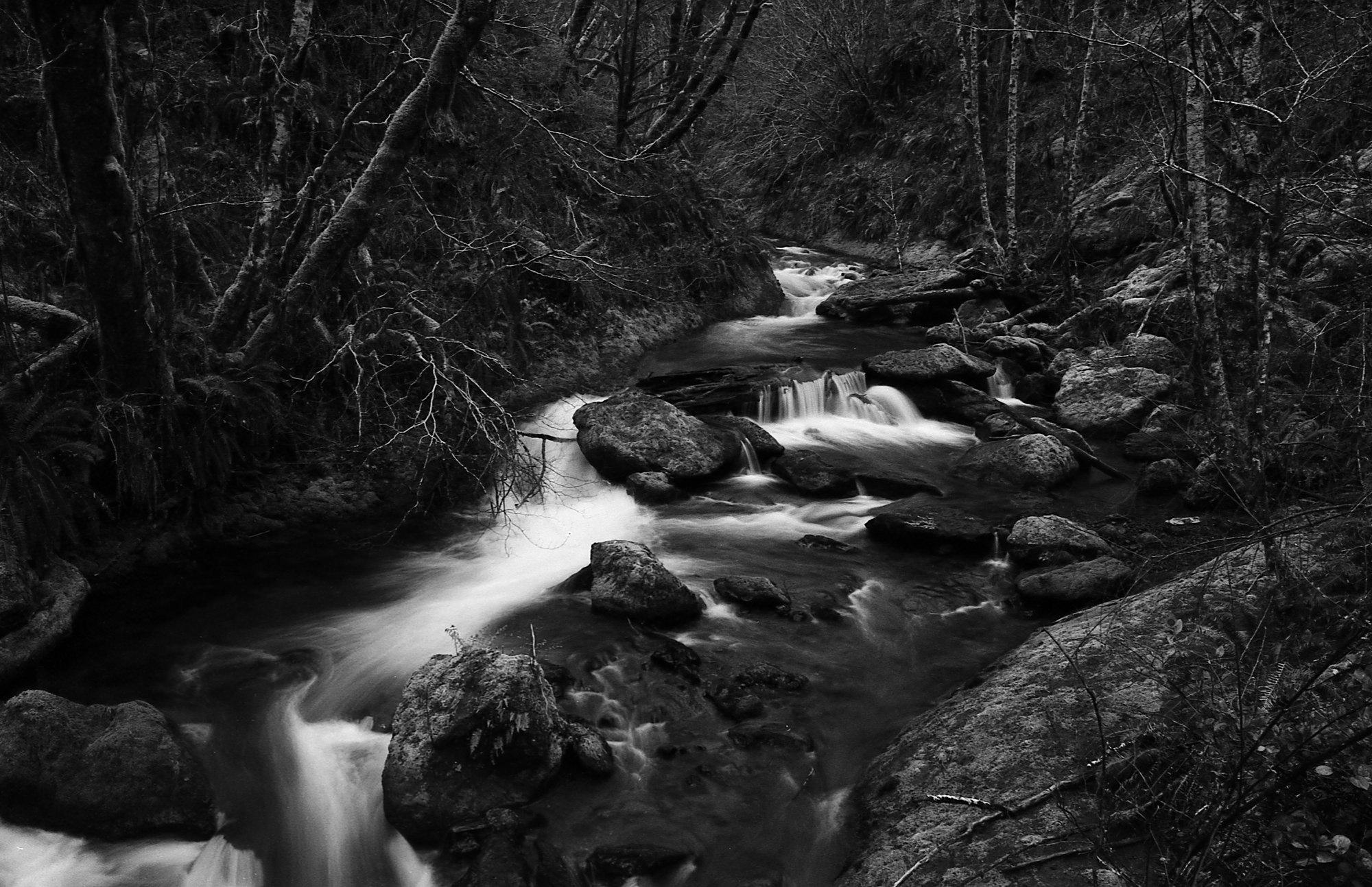 Elk Creek.A little home away from home in the Oregon Coast Range. Nikon F3HPNikkor 28mm f3.5 ai. Ilford Pan F Plus 50Self developed in Kodak Xtol (stock replenished).