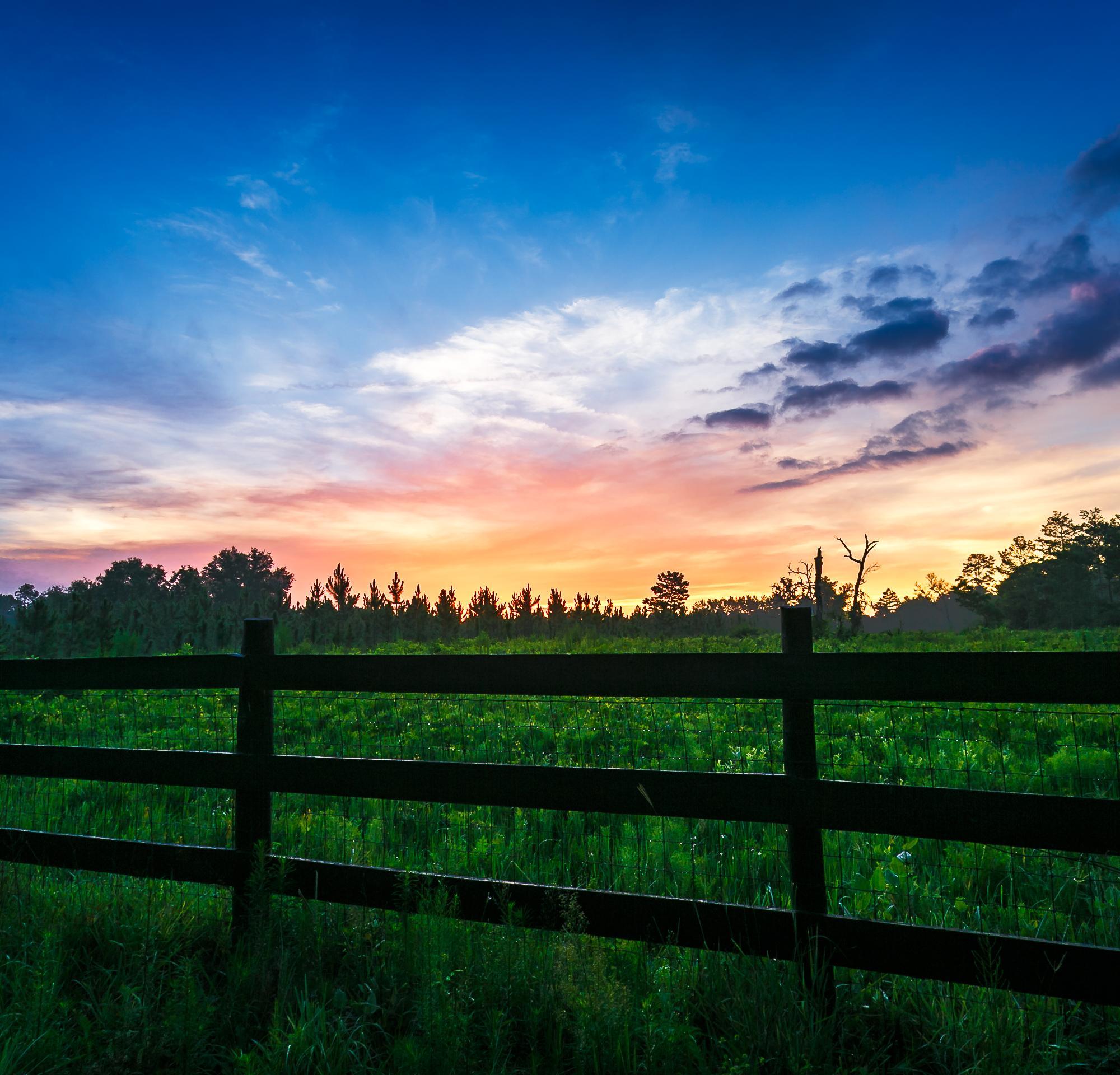 Rural Florida Sunrise #4