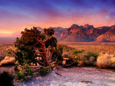 Nevada Photography and Travel Guide - Las ... image