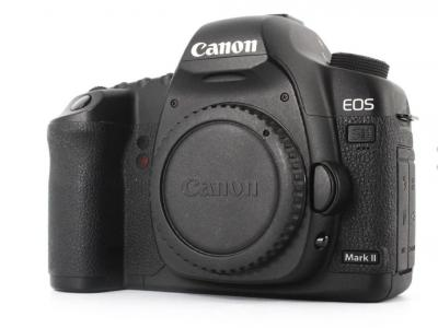 Why the Canon 5D Mark II is Still a Good ... image