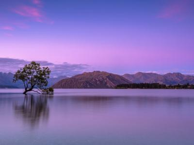 Simple Landscape Photography Tips With ... image