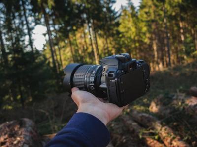 Nikon D5600 Review image