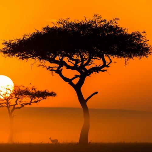Beautiful sunrise by Kurt