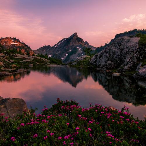 Alpine Bliss by trevorandersonphotography