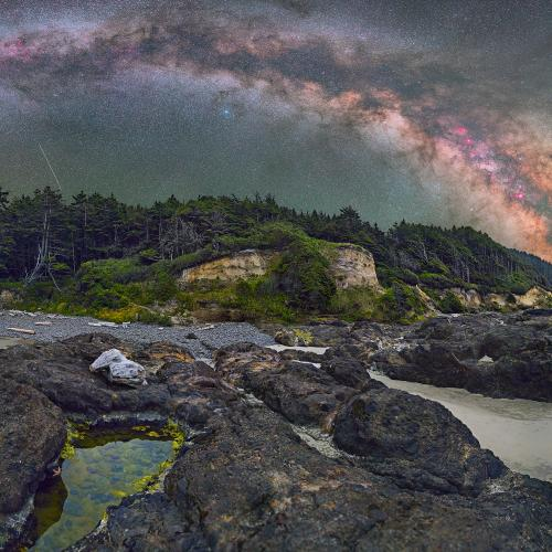 Oregon Coastline with Stars, Shooting Star and Star Fish. by astrodave