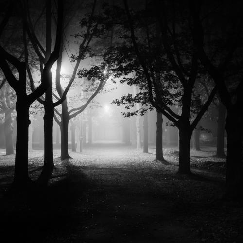 foggy night by jorma