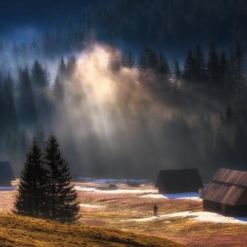 Observer by Paweł Uchorczak