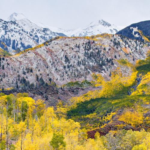 Autumn in the Elks by Paul
