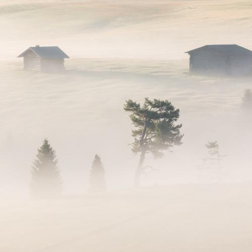 Fog in The Dolomites by Pablo