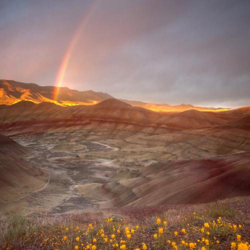 The Painted Hills Oregon  by Gary A Randall