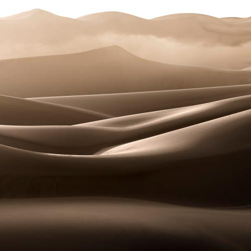 Late Afternoon Fog in the Dunes by Xenia.I