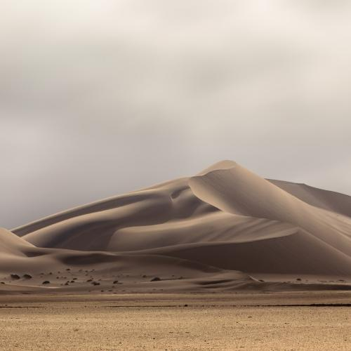 Winter Afternoon in the Namib by Xenia.I