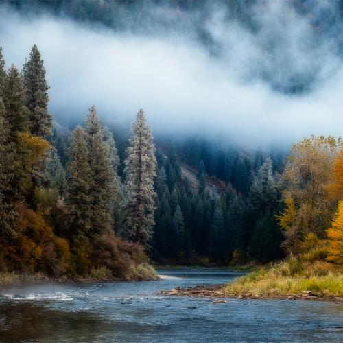 Garden Valley Fall by Brent