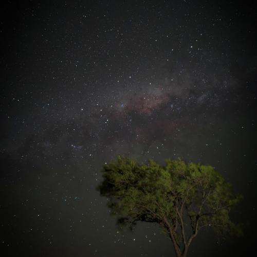 Milky Way shot on a phone by Uriel Segall