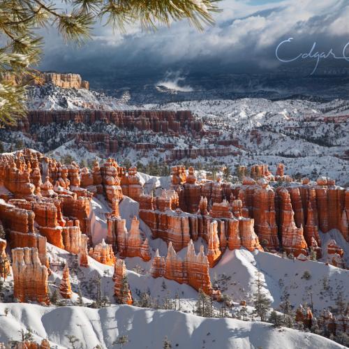 Winter Breeze by Ed