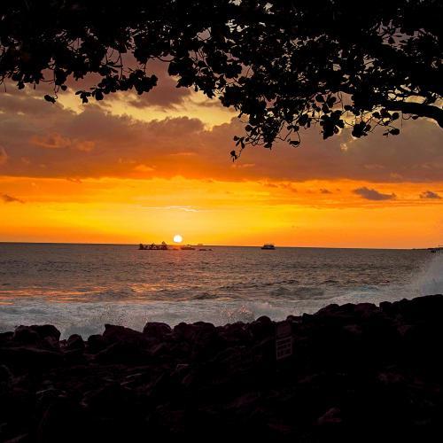 Hawaii Sunset by Harold Zeltner