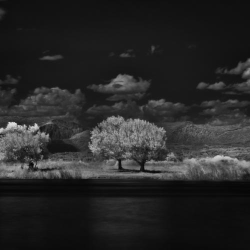 landscape by Dragan Cerovic
